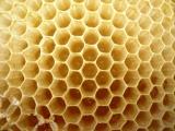Včelí vosk...